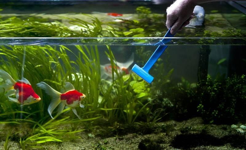 Чистим аквариум