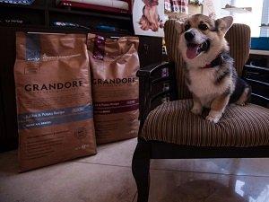 корм грандорф для собак отзывы ветеринаров