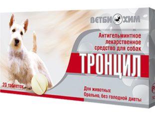 Какие бывают признаки наличия глистов у собак и как лечить собачьи гельминтозы?