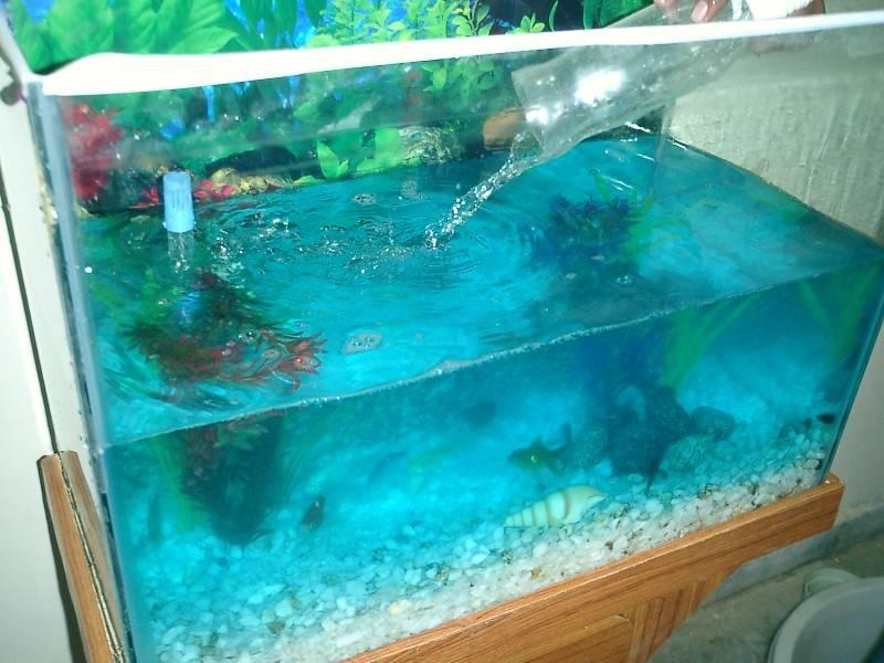 Подготовка новой воды для аквариума