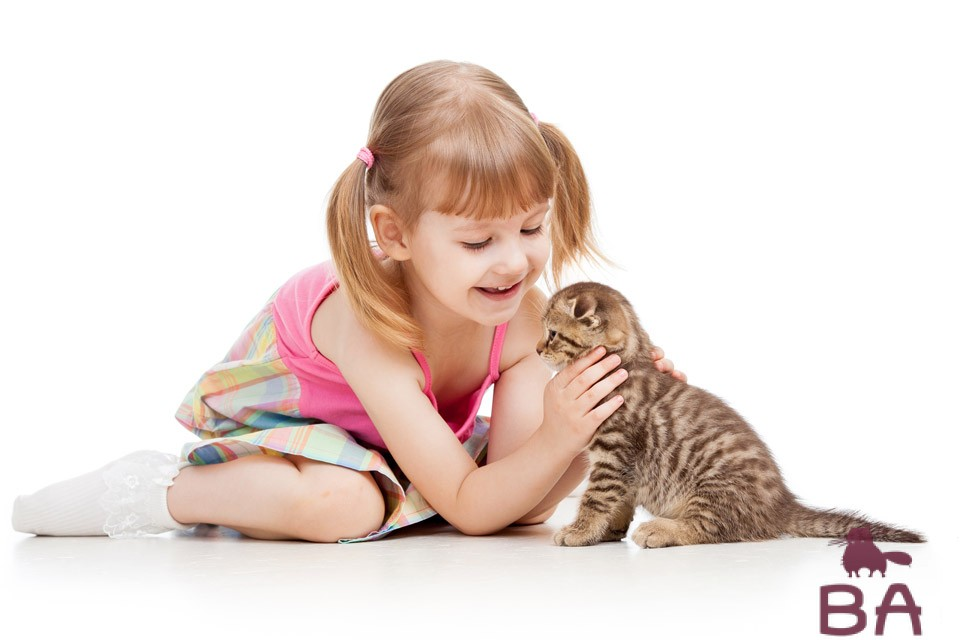Когда можно отдавать котенка?