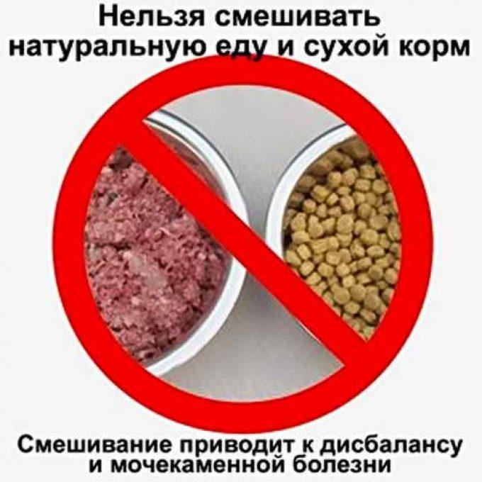 запрещено смешивать корм и натуральную еду