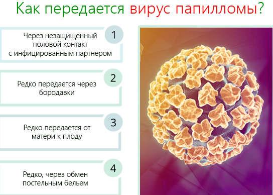 Вирус папилломы у мужчин заражение, появление, симптомы и лечение