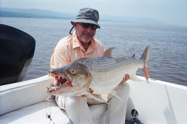 Рыба голиаф читайте статью