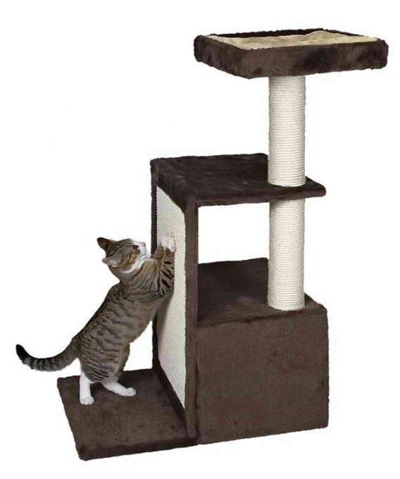 какой домик нужен для кота