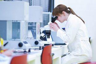 Симптомы и лечение при заражении огуречным цепнем