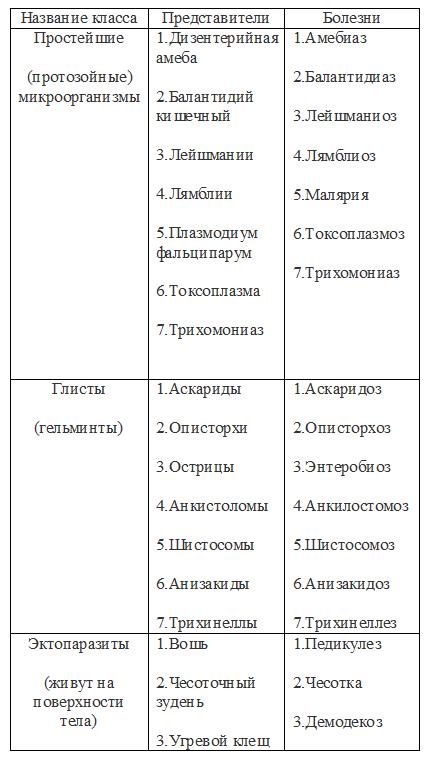 таблица6