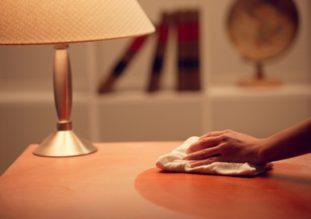 В целях профилактики рекомендуется как можно чаще делать в жилом помещении влажную уборку