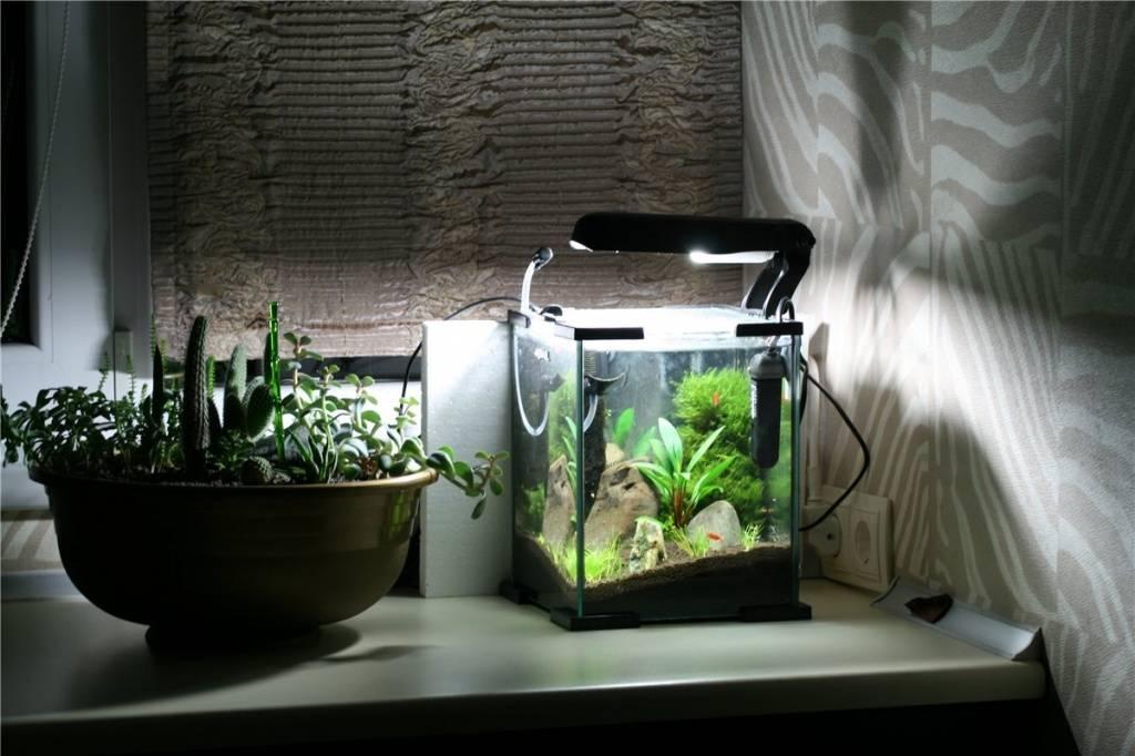 Освещение для креветкария