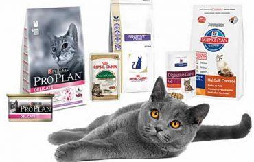 элитные корма для элитных кошек
