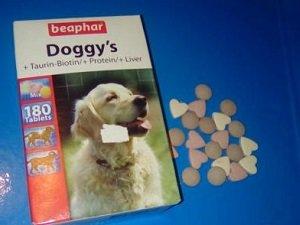 парагрипп у собак симптомы и лечение
