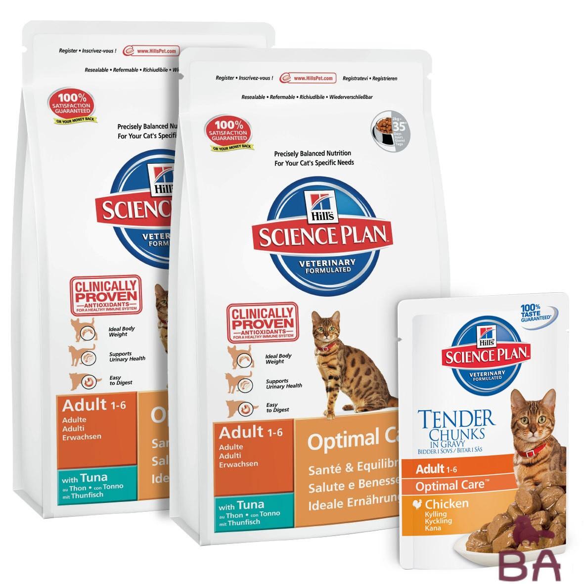 Как правильно подобрать диету для кошек?