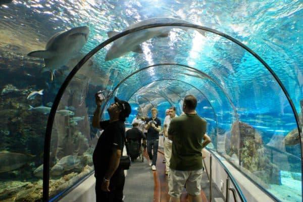 L'Aquarium de Barcelona (Испания)