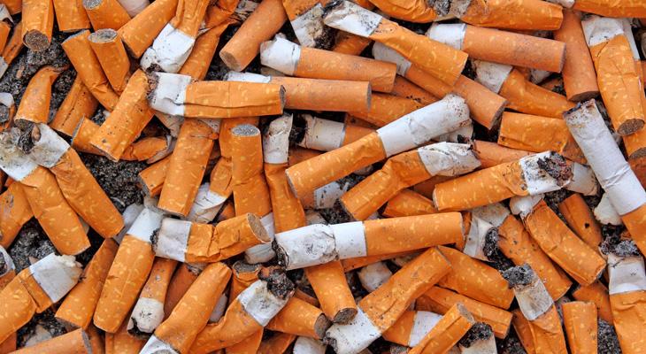 Множиство бычков от сигарет