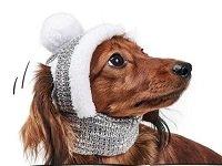 шапка для собаки
