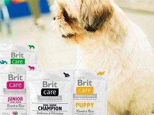 брит премиум корм для собак