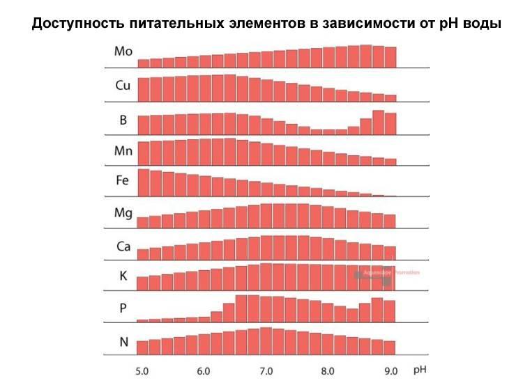 Влияние pH на растительность