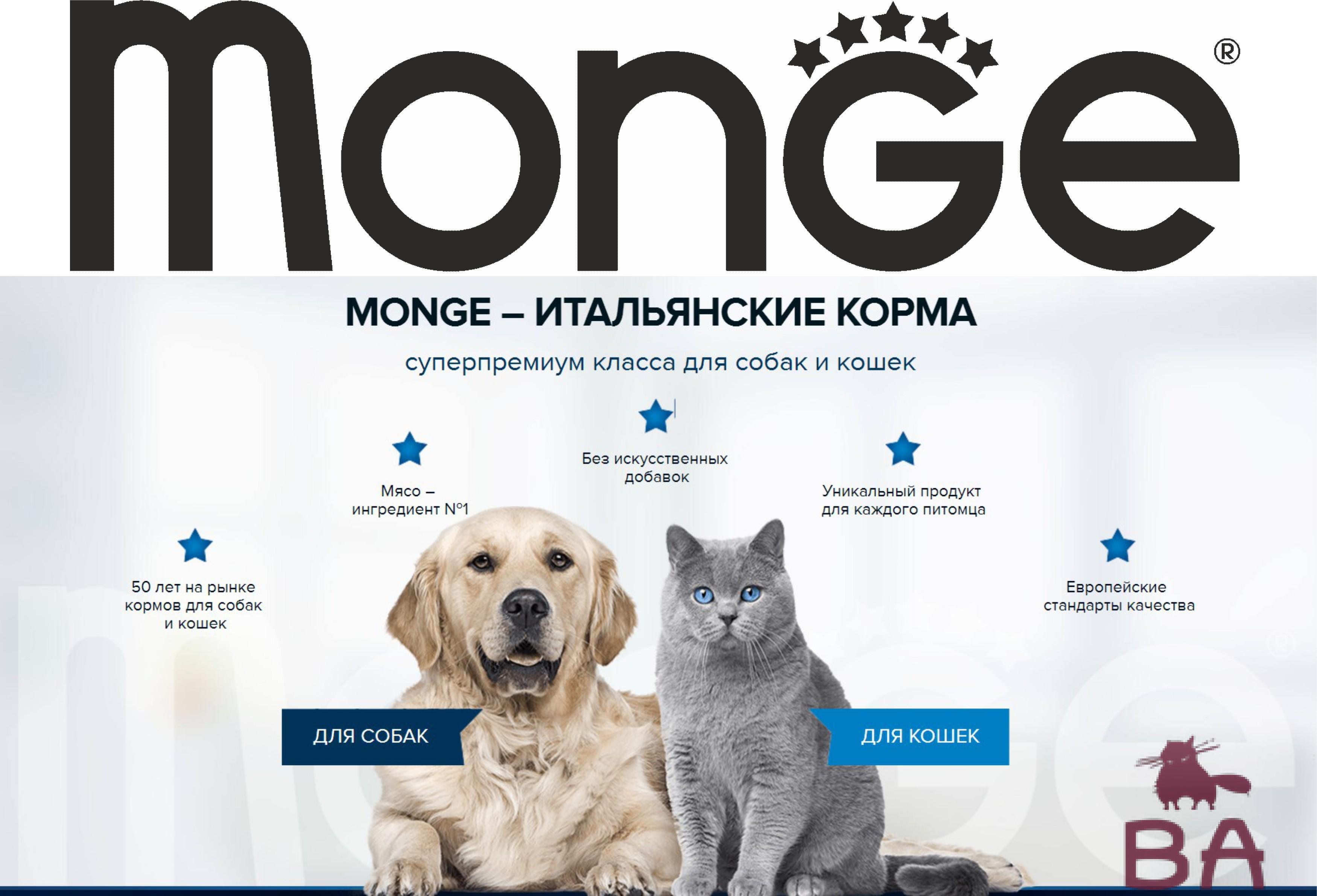 Обзор корма MONGE для кошек: виды, состав, отзывы, стоимость